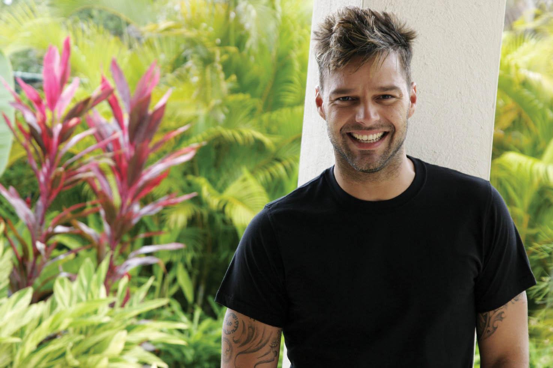 Ricky Martin quiere llevar a LatinoamŽrica proyectos como el de