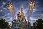 Magic_Kingdom_Orlando_Flor copy